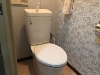 洗浄レバーが壊れて水を流すのが大変!